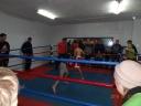 Галерея: <i>Відкритий турнір Хорольщини з боксу 23.01.2016р.</i>